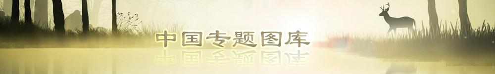 龙8国际娱乐官方网站_read_image (1).jpg